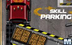 Skill Parking