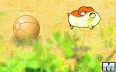 Run Hamster, Run
