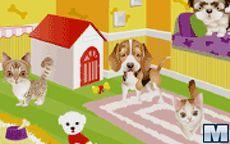 Pets Shop